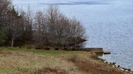 SOLID SMELL: Skipsprosjektet på dette stedet skal ha gått ordentlig på grunn. Foto: Esben Holm Eskelund