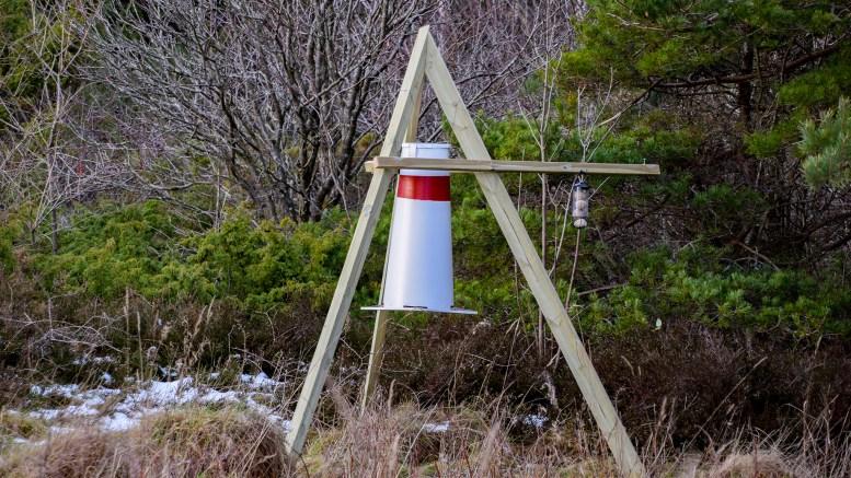 FUGLEMATER: Nå kan fugletitterne sitte i bilen og følge med på matfatet på Spornes. Foto: Esben Holm Eskelund