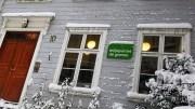 MILJØPARTIET DE GRØNNE: Lokalpartiet i Arendal skilter med tre tromøyfolk på listene til kommunevalget i september. Foto: MDG Arendal/Facebook