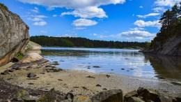 ÅPNET TURSTI: En gjengrodd tursti til Nerte kan nå få sin renessanse etter at Gjerstadvannets venner med minimale inngrep har gjenåpnet den. Foto: Esben Holm Eskelund