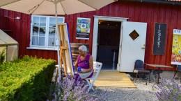 SKAGEN PÅ TROMØY: Tromøy-maler Ellen Marie Hisdal nyter hvert sekund av tiden på Bjellandstrand, hvor hun kan sitte utendørs med arbeidet. Foto: Esben Holm Eskelund
