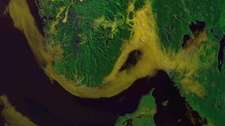 TÅKEHAV: Et belte av tåke ligger langs kysten onsdag morgen. Foto: Satelitt/Meteorologisk institutt/Twitter