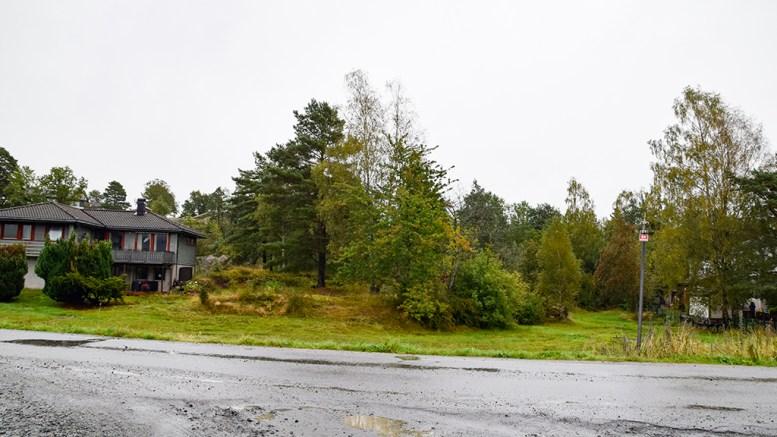 HAMPEMYRA: I dag et boligområde, men dyrkbar myr før i tiden. Foto: Esben Holm Eskelund