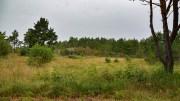 AVVISTE TRETOPPHYTTER: Flertallet i kommuneplanutvalget gikk imot søknaden om bygging av to tretopphytter ved Spornes, og mener det må lages en reguleringsplan. Foto: Esben Holm Eskelund