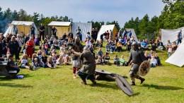 VIKINGDAGER: Egdehirden i Agder Vikinglag dramatiserte historiske vikingers slagkraft på slagmarken i Hove leirsenter i helgen. Foto: Esben Holm Eskelund