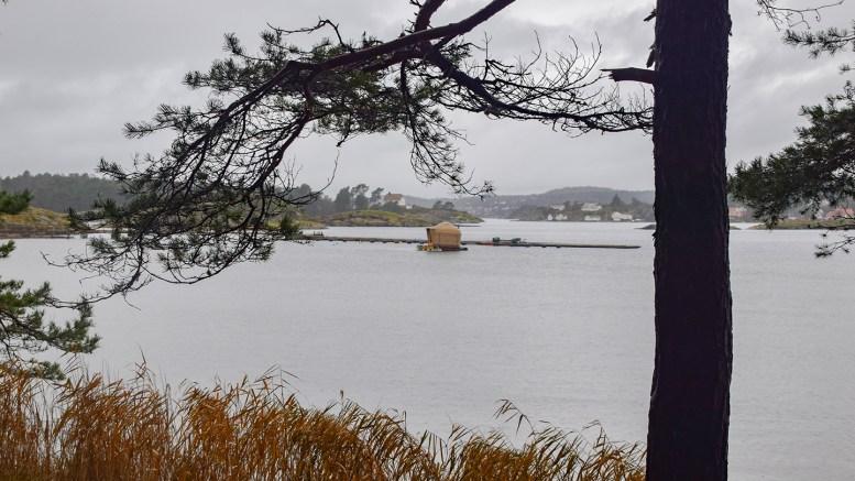 FLYTENDE BADSTUE: Canvas Hove påklaget vedtaket om at badstua ikke kan ligge i Hovekilen etter at vedtaket ble gjort kjent for selskapet i juli. Foto: Esben Holm Eskelund