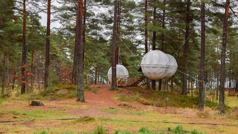 GRAVRØYS: Området hengende telt er satt opp på Canvas Hove kan være en ukjent gravrøys, som eksperter mener må undersøkes av arkeologer for å slå det fast med sikkerhet. Området har i årevis før Canvas Hove vært i bruk av campinggjester. Foto: Esben Holm Eskelund