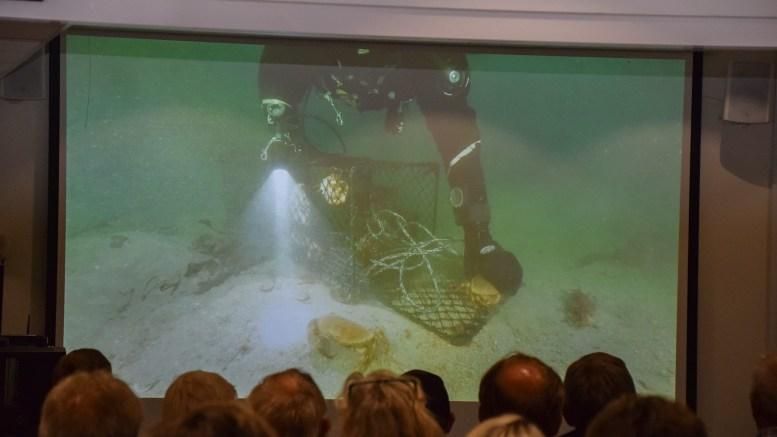 INNSPILLSMØTE: Canvas Hove er stedet hvor Havforskningsinstituttet håper å få gode lokale tips om tapte fiskeredskaper og fiskeplasser. Her fra prosjektlanseringen i fjor høst. Arkivfoto