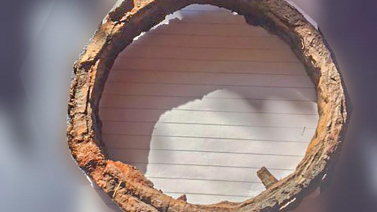 HOVE-DINGS: Denne dingsen i det som sannsynligvis er jern ble funnet i bakken på en sti på Hoveodden. Vet du hva det er? Foto: Privat