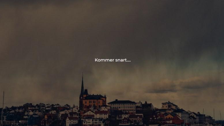 NETTBUTIKK: Som et svar på manglende kunder i sentrum tenker sentrumsselskapet Arendal by nytt. Foto: Skjermdump
