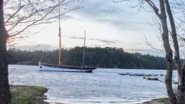 GREYHOUND: Arendal Herregaard ønsker å bruke seilskuta restaurant og få ligge i Hovekilen. Det frarådes av nasjonalparkforvalteren i Raet nasjonalpark. Foto: Esben Holm Eskelund