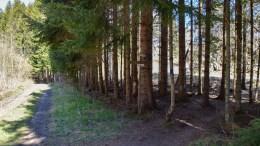VESTABRODDE: Brodde ligger mellom østa og vesta på dette stedet. Foto: Esben Holm Eskelund