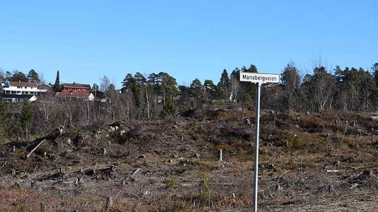 MARISBERG: En tomtekjøper vurderer å droppe tilbakeflytting fra Oslo om det ikke blir noe av den vedtatte planen om å bygge kommunal barnehage på Marisberg. Arkivfoto