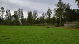 HOVE PÅ VENT: Arendal kommune søker nå om å få etablere et offisielt nasjonalparksenter i Vitensenteret Sørlandet i Arendal, men har ikke gitt opp ambisjonene om etablering på Hove, hvor bystyret allerede har vedtatt tomt. Arkivfoto