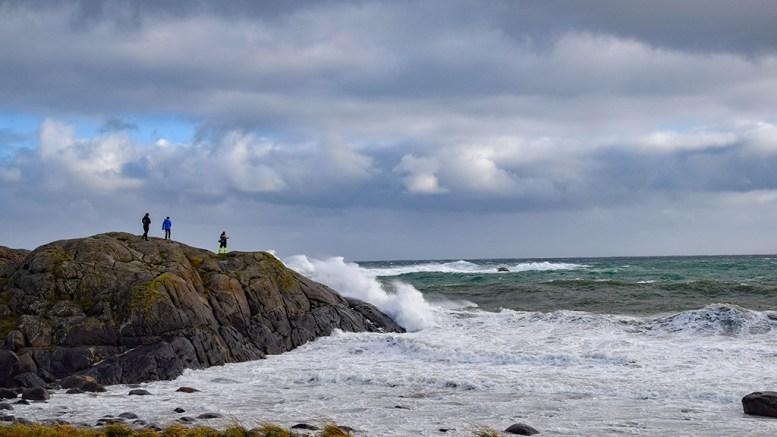 KRAFTIG VIND Meteorologene varsler kraftig vind og vindkast det neste døgnet. Foto: Esben Holm Eskelund