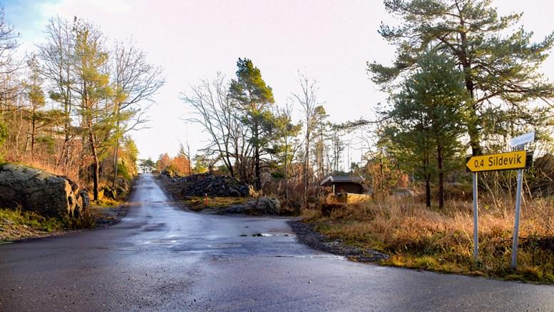 STUMMENDE MØRKT: På dagtid er det slett ikke så mørkt langs Sildevigveien. På kveldstid derimot er det blitt mørkere enn noen gang. Foto: Esben Holm Eskelund