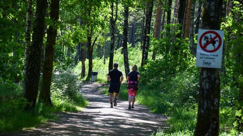IKKE KVALIFISERT: Miljødirektoratet har en tilskuddsordning for drift av nasjonale tursiststier, men Hove-området er ikke kvalifisert under de gjeldende reglene. Arkivfoto