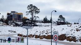 MARISBERG: Arendal eiendom KF ønsker initiativ til at felt B og A utvikles til en fortsettelse av barnas bydel. Foto: Esben Holm Eskelund