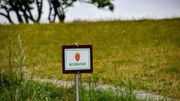 INGEN AVKLARING: Miljødirektoratet kan ikke komme nasjonalparkstyret til unnsetning i ønsket om en ekstra stilling og mer ressurser. Arkivfoto
