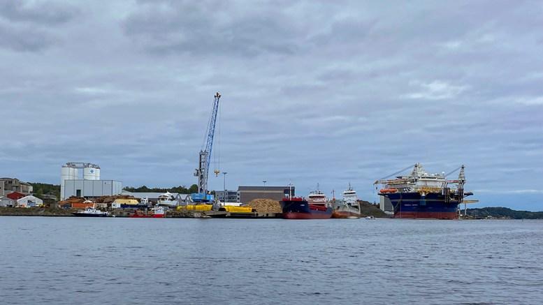 ARENDAL HAVN KF: Havnevirksomheten gjorde det økonomisk bedre på mange områder i årets andre tertial. Foto: Esben Holm Eskelund