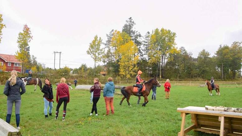 FELTRITTRENING: I høstferien gjennomførte Team Raet på Bjelland felttrittrening med unge ryttere fra flere steder. Foto: Esben Holm Eskelund