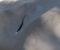 UAKSEPTABELT: Til alt hell ble ingen skadet da telt ble kuttet opp og skadet på Canvas Hove, og lykkeligvis tok det ikke fyr som følge av at en bygning ble dynket i brennbar væske. Foto: Esben Holm Eskelund