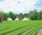 AVSLÅR GLAMPINGTELT: Arendal kommune avslår søknaden om midlertidig godkjenning av glampingtelt og plattinger på det østlige jordet langs Spornesveien. Foto: Esben Holm Eskelund