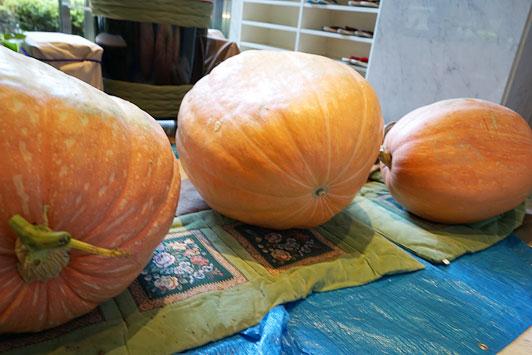 pumpkin2014-04