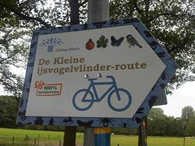 Kleine IJsvogelvlinder fietstocht