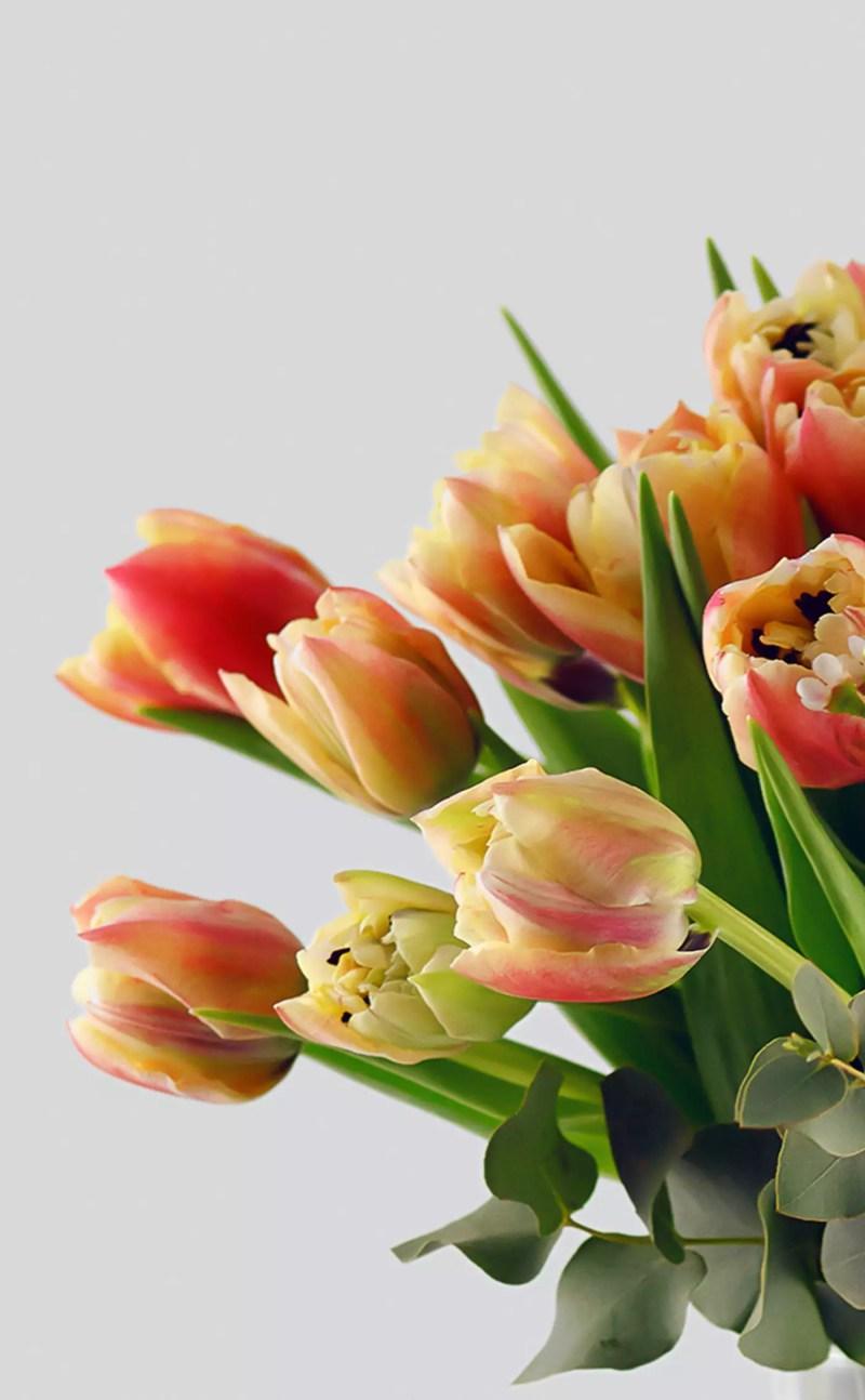 Gėlių puokštė Pavasario vardu