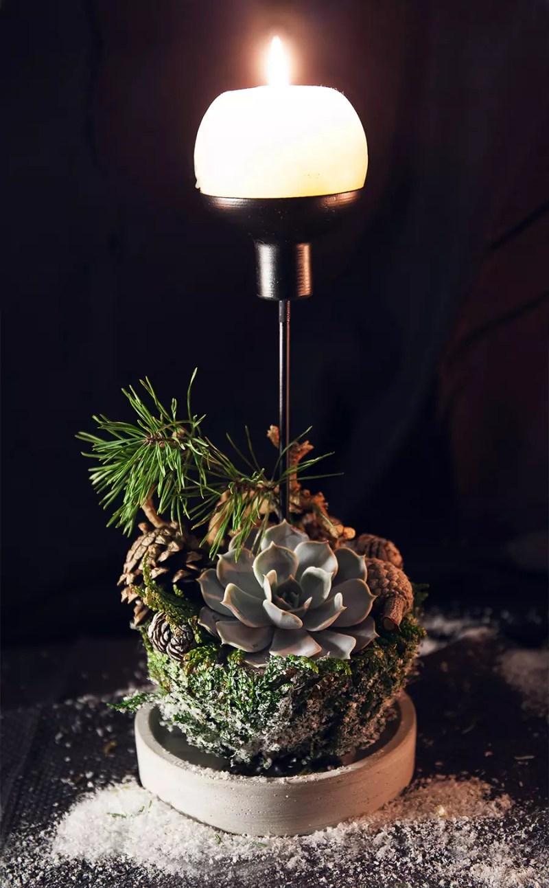 Kalėdinė dekoracija Sukulentas ir žvakė