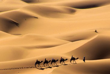 Plano de Aula - Desertos Africanos: Saara, Kalahari e Namib