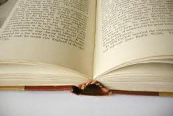 A literatura de Moçambique vista do outro lado do Atlântico