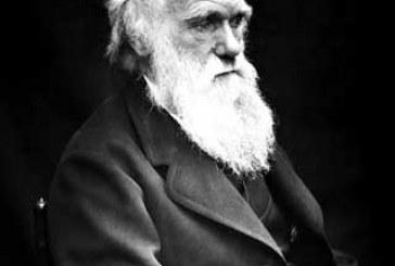 Charles Darwin e a escravidão no Brasil