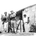 Depoimentos de Escravos Brasileiros