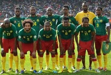 Um outro olhar: 6 curiosidades sobre Camarões