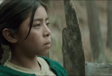 Todos os longas dirigidos por mulheres no Festival de Cinema Latino-Americano