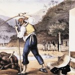 Debret e a Cultura Negra no Brasil