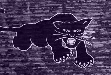 Curso online sobre os Panteras Negras
