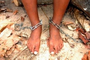 Historiadores dos EUA dizem que Portugal deve pedir desculpa por tráfico de escravos