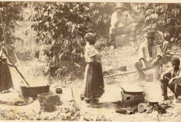 Abolição da escravidão em 1888 foi votada pela elite evitando a reforma agrária, diz historiador