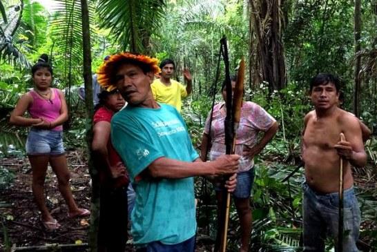 URU-EU-WAU-WAU: Terra indígena é invadida por grileiros em Rondônia