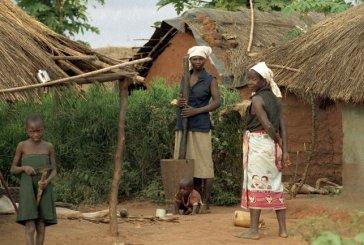 Direitos humanos das mulheres guineenses violados por não terem acesso a propriedade das terras