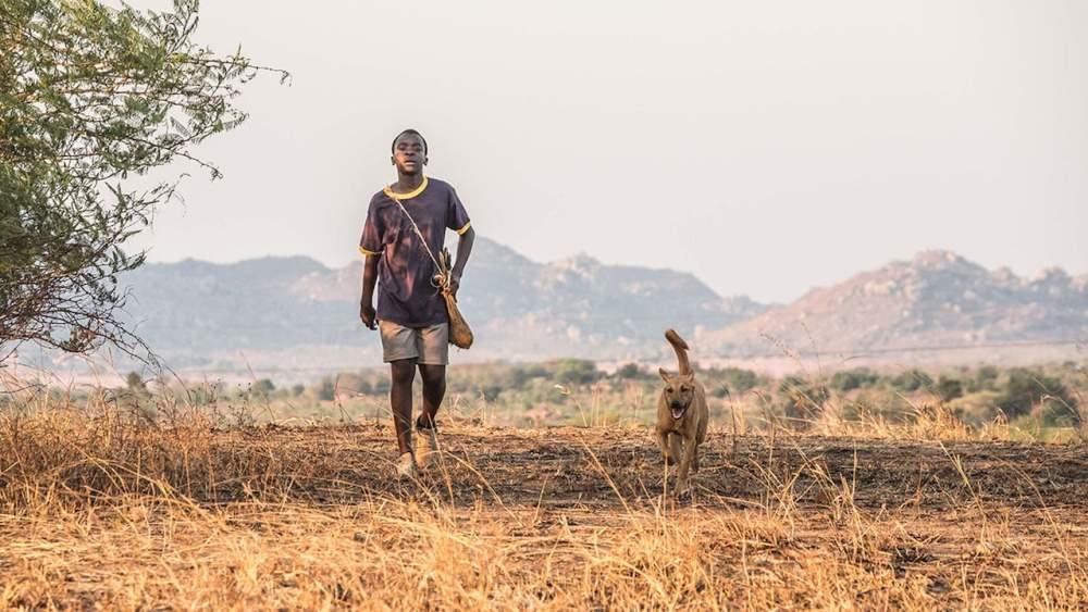 menino andando em campo na Africa seguido por um cachororro