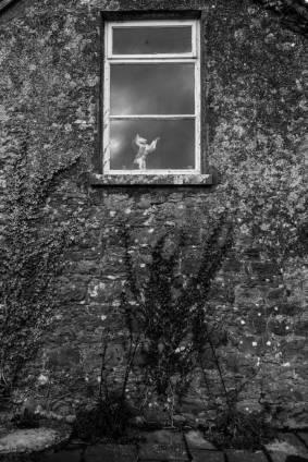 Foto de Luciano Klaus (10)