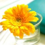 Inspiration No. 36: Yarncamp, Nähen und was Schönes in Gelb