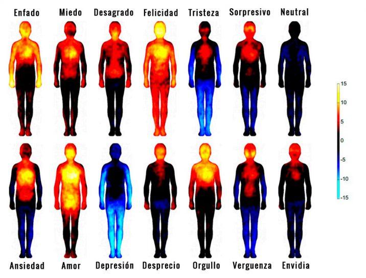 ¿Cómo influyen las emociones en tu cuerpo?