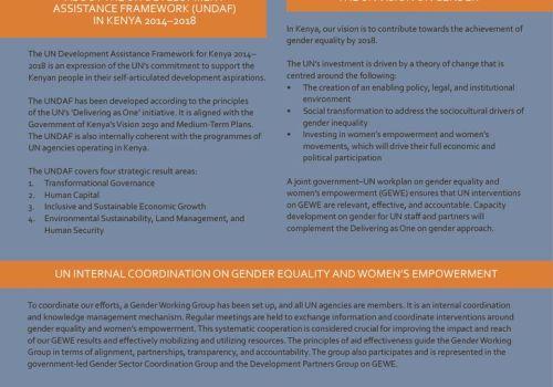 Thumbnail Of Gender UNDAF 17 June