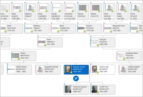 Pourquoi publier votre arbre généalogique sur plusieurs sites - Geneanet