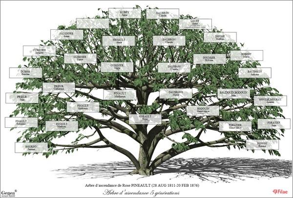 Imprimer arbre genealogique Filae - Exemple Arbre décoratif